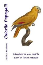 Culorile Papagalii