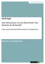 Eine Renzension von Eva Illouz Werk 'Der Konsum der Romantik'