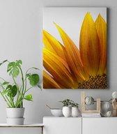 Yellow Flower Canvas   60x40 cm