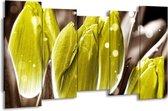 Canvas schilderij Tulp   Geel, Grijs   150x80cm 5Luik