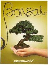 Bonsaiworld Bonsai Boekje Nederlands