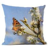 Kussenhoes: vlinder Kleine Vos tussen de witte bloesem, fotograaf Heidie Mulder