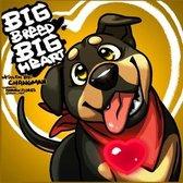 Big Breed Big Heart