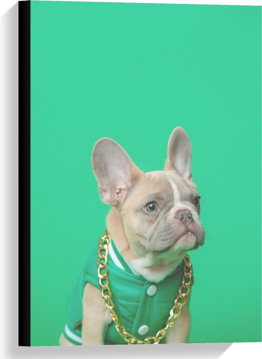 Canvas  - Hond met Groen Pakje en Ketting  - 40x60cm Foto op Canvas Schilderij (Wanddecoratie op Canvas)