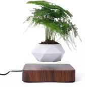 Zwevende bloempot - Zwevende plant - Eikenhout - Voor Binnen - Bohemian Decoratie - Bloempot - Decoratie Woonkamer