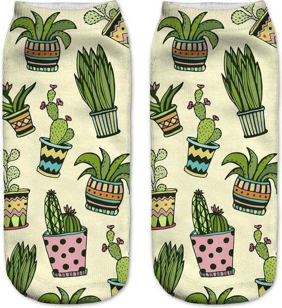 Cactus enkelsokken