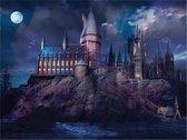 Fat Joe Puzzel 1000 stukjes Hogwarts by Night - Zw