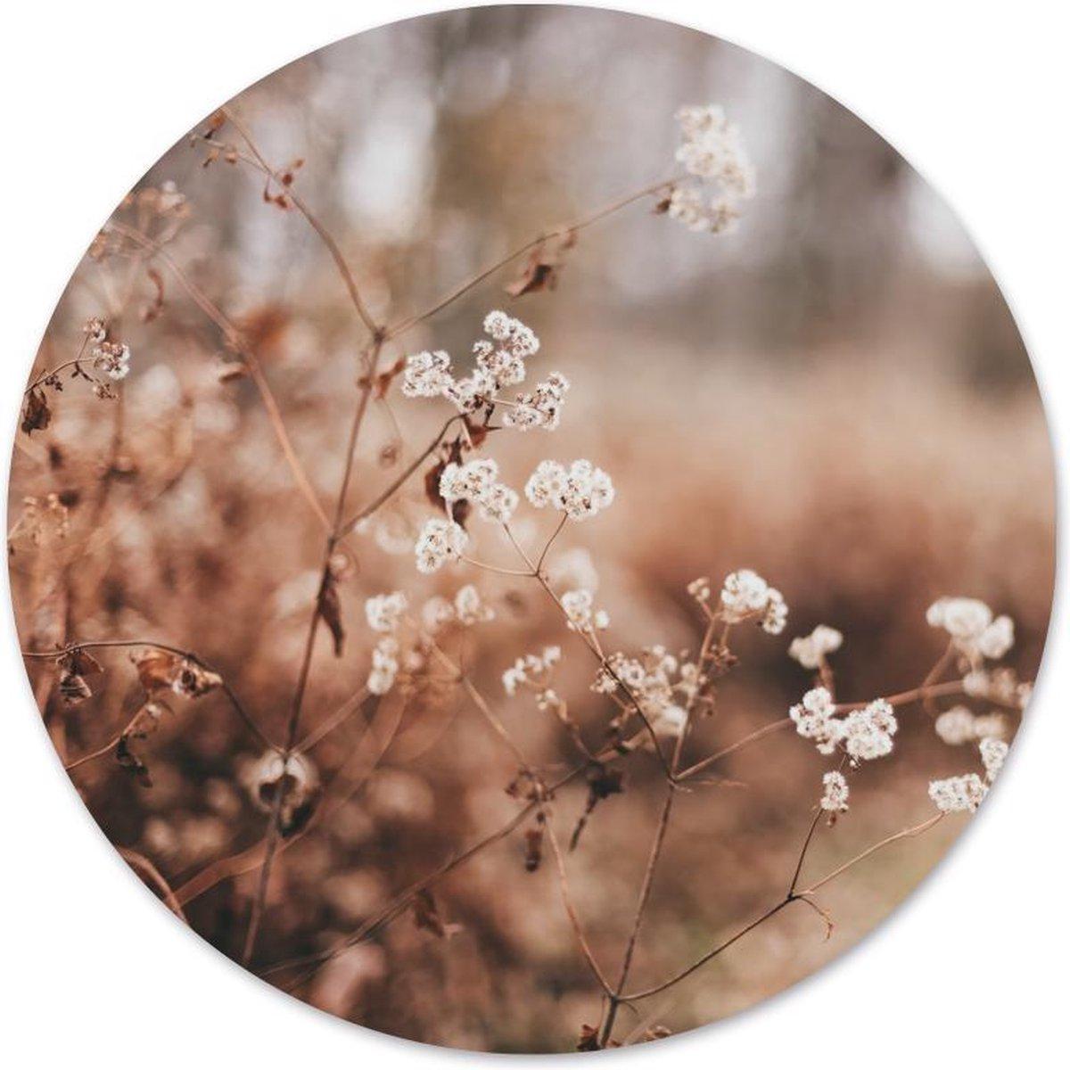 Label2X Muurcirkel cosy flower -   100 cm - Dibond - Aanbevolen