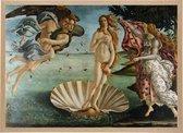 Poster in Houten Lijst - De Geboorte van Venus - Sandro Botticelli - Large 50x70 - Renaissance Kunst