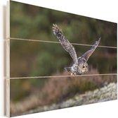 Oeraluil vliegt met gestrekte vleugels Vurenhout met planken 90x60 cm - Foto print op Hout (Wanddecoratie)