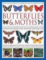 Illustrated World Encyclopedia of Butterflies & Moths