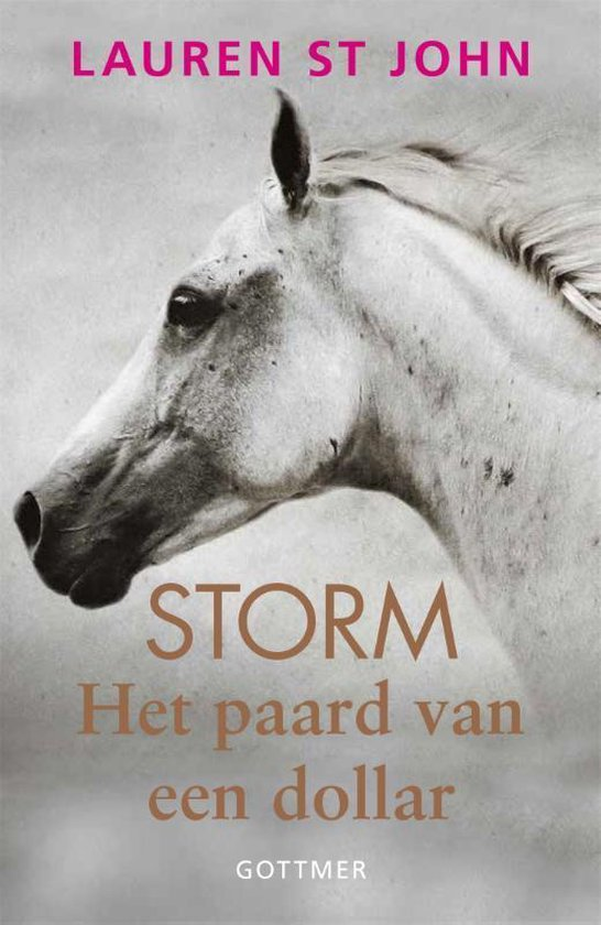 Storm - Het paard van een dollar - Lauren St. John  