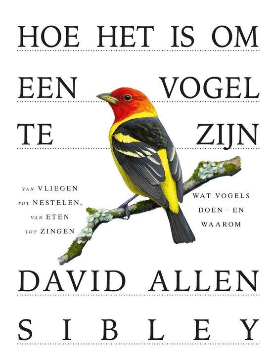 Hoe het is om een vogel te zijn, David Allen Sibley | 9789024595143 |  Boeken | bol.com