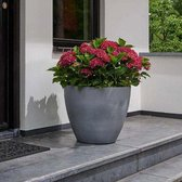 Keter Bloempot XL  Betonlook - 73 liter- 53 x 50 cm - Bloemenbak - Plantenbak