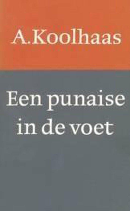Punaise in de voet - Anton Koolhaas |