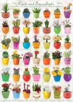 Puzzel 1000 stukjes -Cactus&Succulents