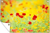 Gele en rode papavers tuinposter 180x120 cm - Tuindoek / Buitencanvas / Schilderijen voor buiten (tuin decoratie) XXL / Groot formaat!