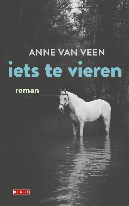 Iets te vieren - Anne van Veen |