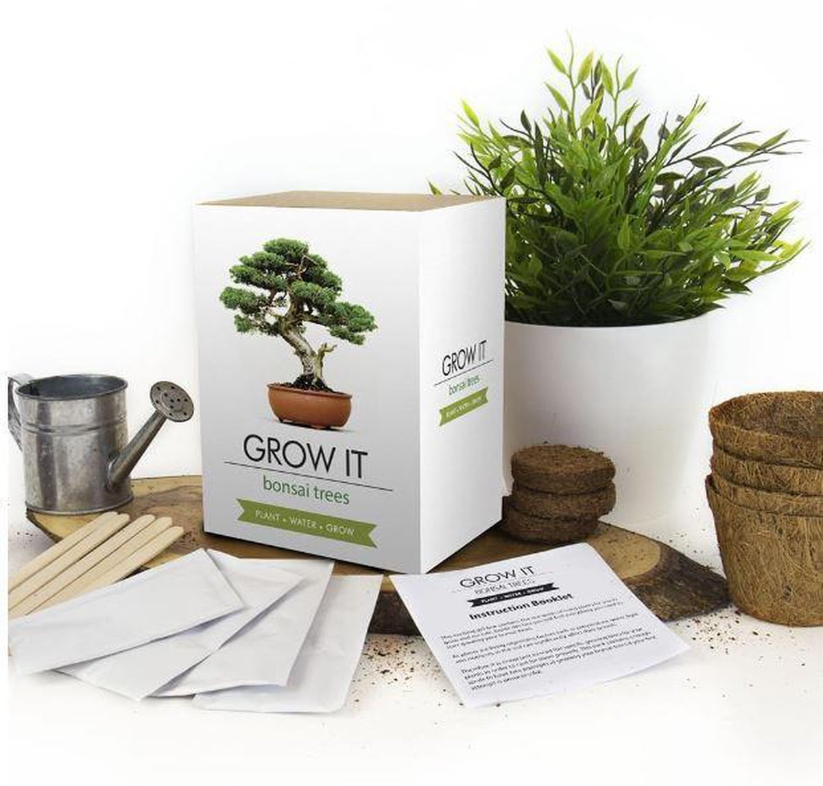 Kweek je eigen bonsai boom