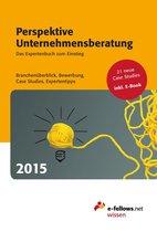 Perspektive Unternehmensberatung 2015