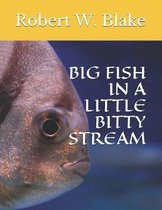 Big Fish in a Little Bitty Stream