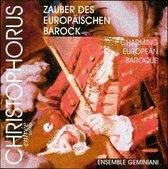 Charming European Baroque / Ensemble Geminiani