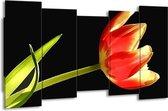 Canvas schilderij Bloem | Rood, Groen, Zwart | 150x80cm 5Luik
