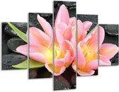 Glasschilderij Lelie   Roze, Zwart   100x70cm 5Luik   Foto print op Glas    F005786