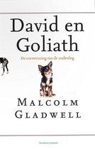 David en Goliath