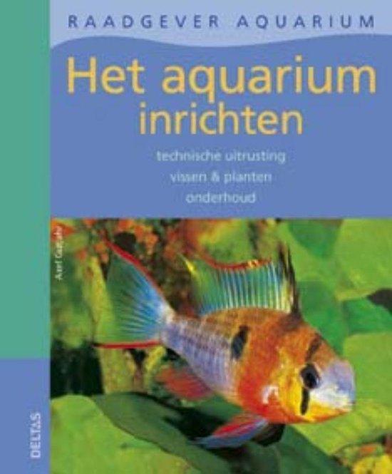 Het Aquarium Inrichten - Axel Gutjahr | Readingchampions.org.uk