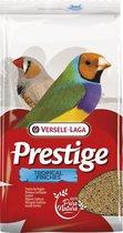 Prestige Tropische Vogel