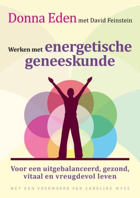 Cover van het boek 'Werken Met Energetische Geneeskunde'