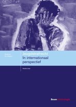 Studieboeken Criminologie & Veiligheid  -   Jeugdstrafrecht