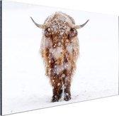Highland in de sneeuw Aluminium 120x80 cm - Foto print op Aluminium (metaal wanddecoratie)