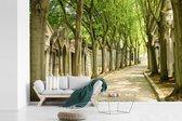 Fotobehang vinyl - Pere Lachaise-begraafplaats in Parijs breedte 390 cm x hoogte 260 cm - Foto print op behang (in 7 formaten beschikbaar)