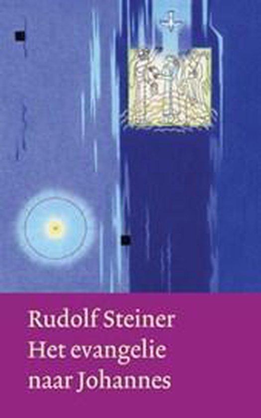 Boek cover Het evangelie van Johannes van Rudolf Steiner (Hardcover)