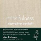 mindfulness in het veld van aandacht