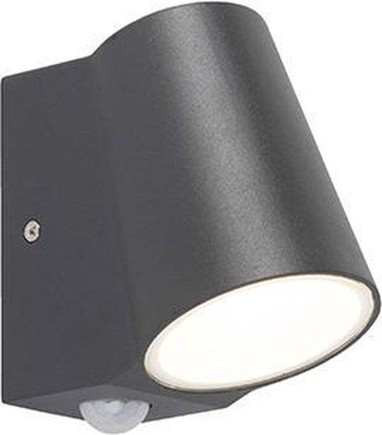 QAZQA Uma - Buitenlamp met sensor/bewegingsmelder - 1 lichts - D 120 mm - Antraciet