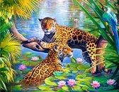 Schilderen Op Nummer Volwassenen - Met Frame - Paint By Number - Hobby  - Dieren - Luipaarden in de Jungle  30x40 cm