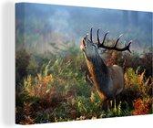 Burlend hert in de ochtend Canvas 30x20 cm - klein - Foto print op Canvas schilderij (Wanddecoratie woonkamer / slaapkamer) / Wilde dieren Canvas Schilderijen