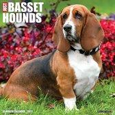 Just Basset Hounds 2021 Calendar