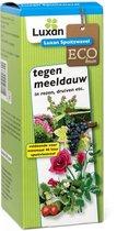 Luxan Spuitzwavel 200gr  tegen meeldauw in rozen ed.
