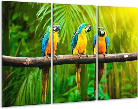 Canvas schilderij Vogels | Groen, Oranje, Blauw | 120x80cm 3Luik