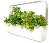 Binnentuin met LED-verlichting TREGREN T12 Kitchen Garden White - tot 12 planten