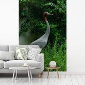 Fotobehang vinyl - Saruskraan in een groene omgeving breedte 150 cm x hoogte 220 cm - Foto print op behang (in 7 formaten beschikbaar)