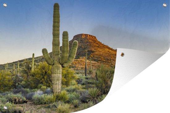 Tuinposter - Saguaro cactus - 180x120 cm - XXL