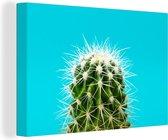 Cactus op blauw canvas 2cm