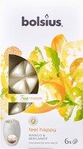 Bolsius True Scents Wax Melts - Feel Happy - 6 stuks
