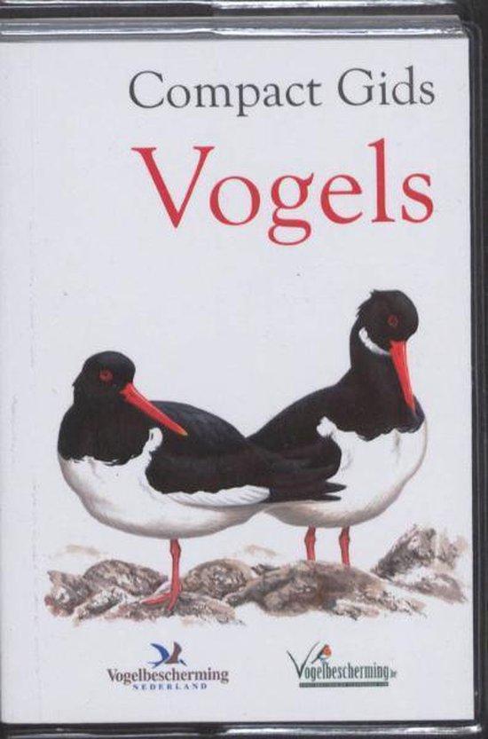 Boek cover Compact Gids Vogels van Scribent (Paperback)