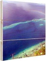 Rainbow Reef Oceanie Hout 30x20 cm - klein - Foto print op Hout (Wanddecoratie) / Zee en Strand